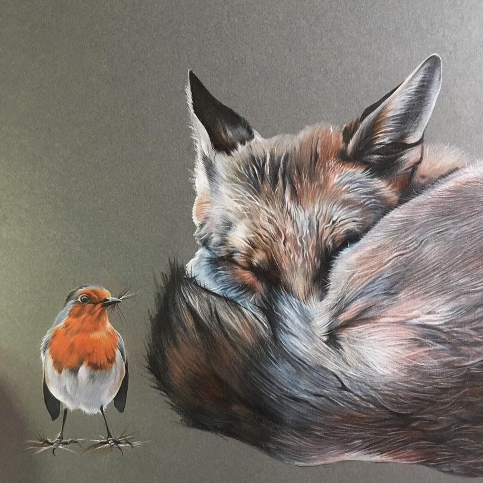 Robin and fox. Using colour pencils (Derwent Artist and Caran d'Ache) on grey/green mountboard.