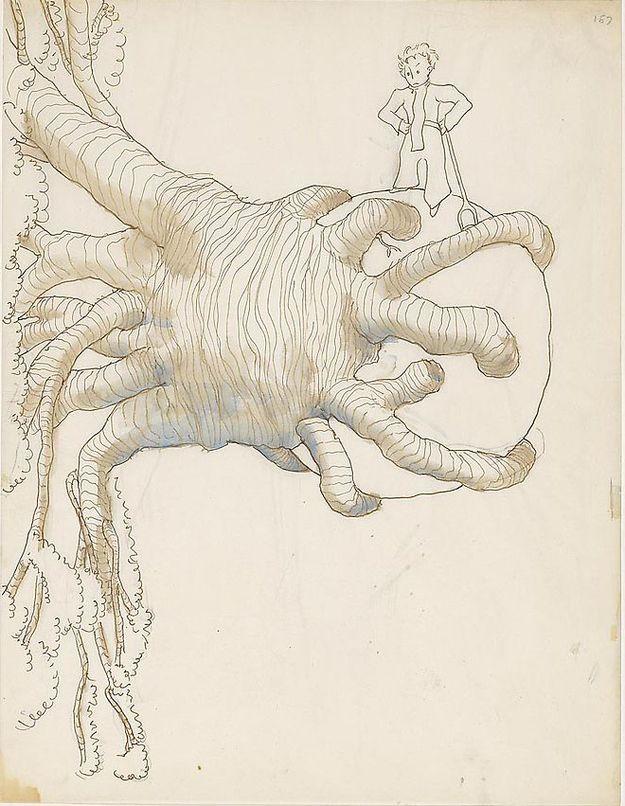 Primeros dibujos de 'El Principito'.