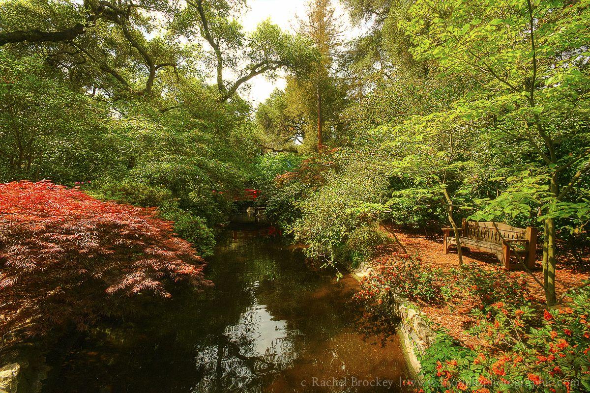 Entry to the Japanese Garden inside Descanso Gardens