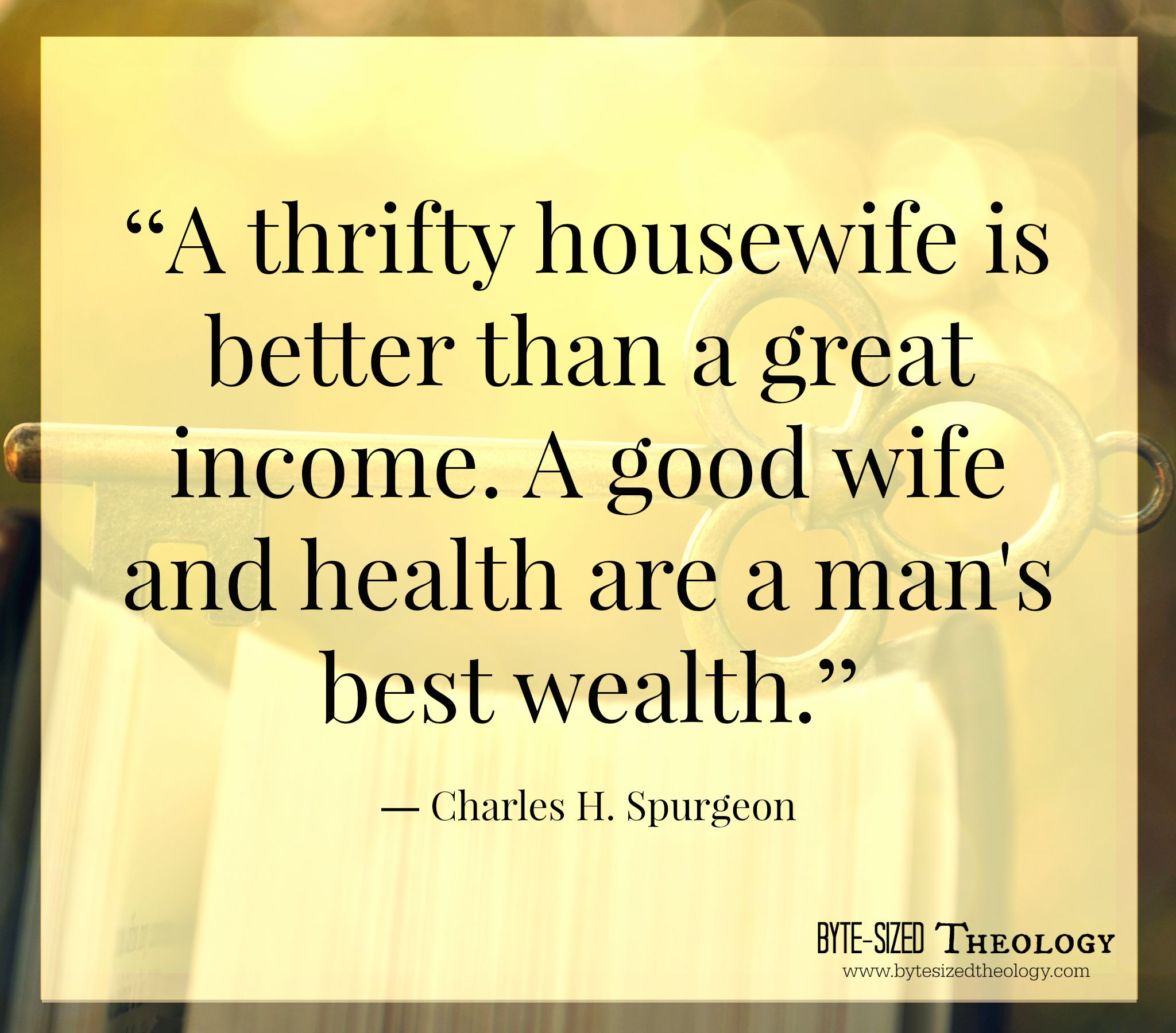 A Thrifty Housewife... Find More Encouragement At Byte