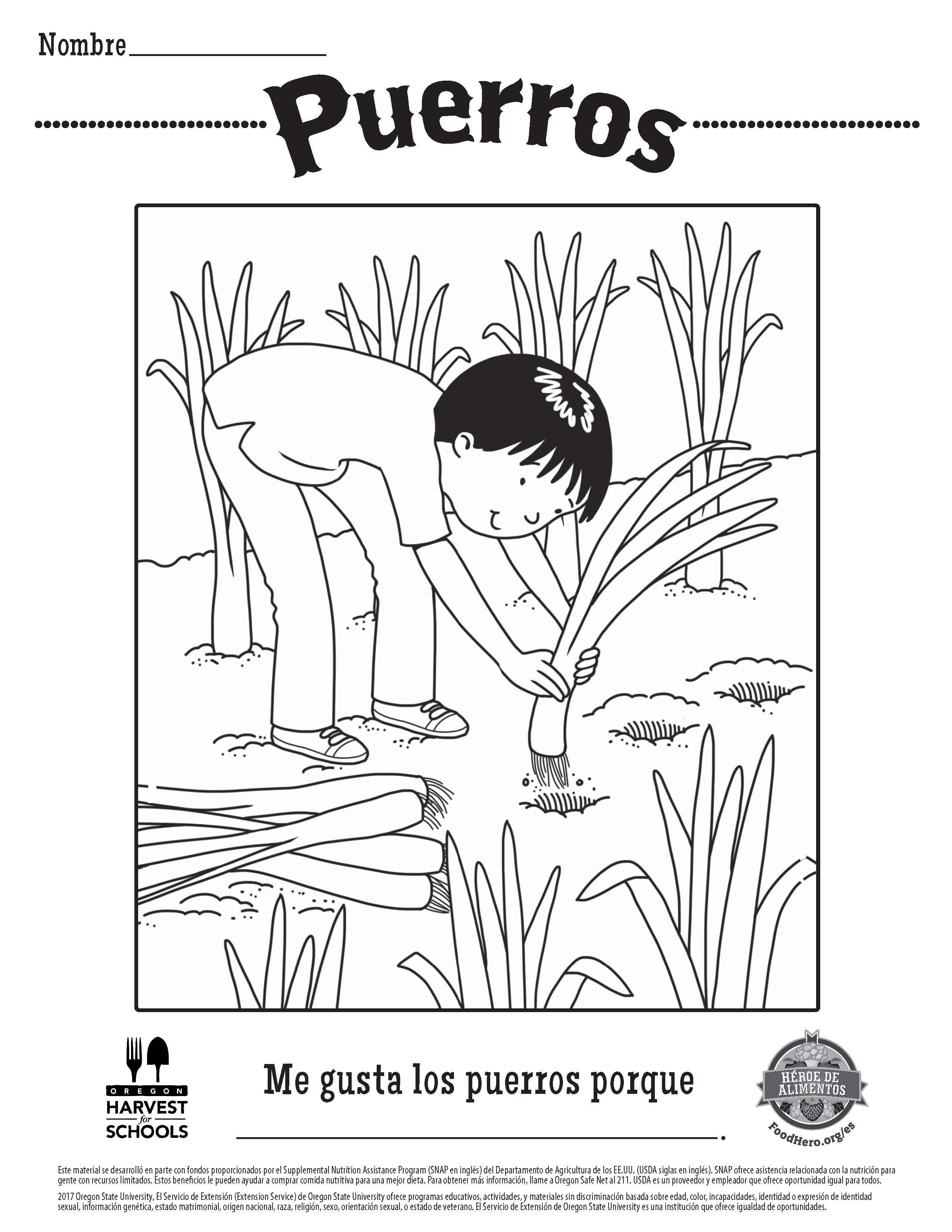 food hero childrens coloring sheet free printable leeks in spanish