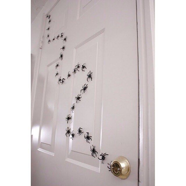 Decorate your house with spiders for kids \u003c\u003c #Glendale #Halloween - spiders for halloween decorations