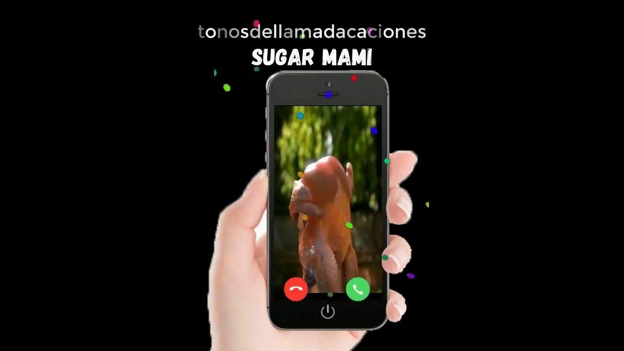 Sugar Mami Descargar Tonos De Llamada Tonos De Llamada Gratis Tonosd Tonos De Llamada Gratis Tonos De Llamadas Descargar Tonos