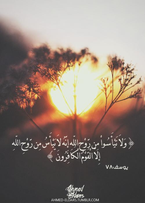 Ahmed Eldars و لا ت ي أ س وا م ن ر و ح الل ه إ ن ه لا ي ي أ س م ن ر و ح الل ه إ لا ال ق و م Quran Quotes Inspirational Quran Quran Quotes Love