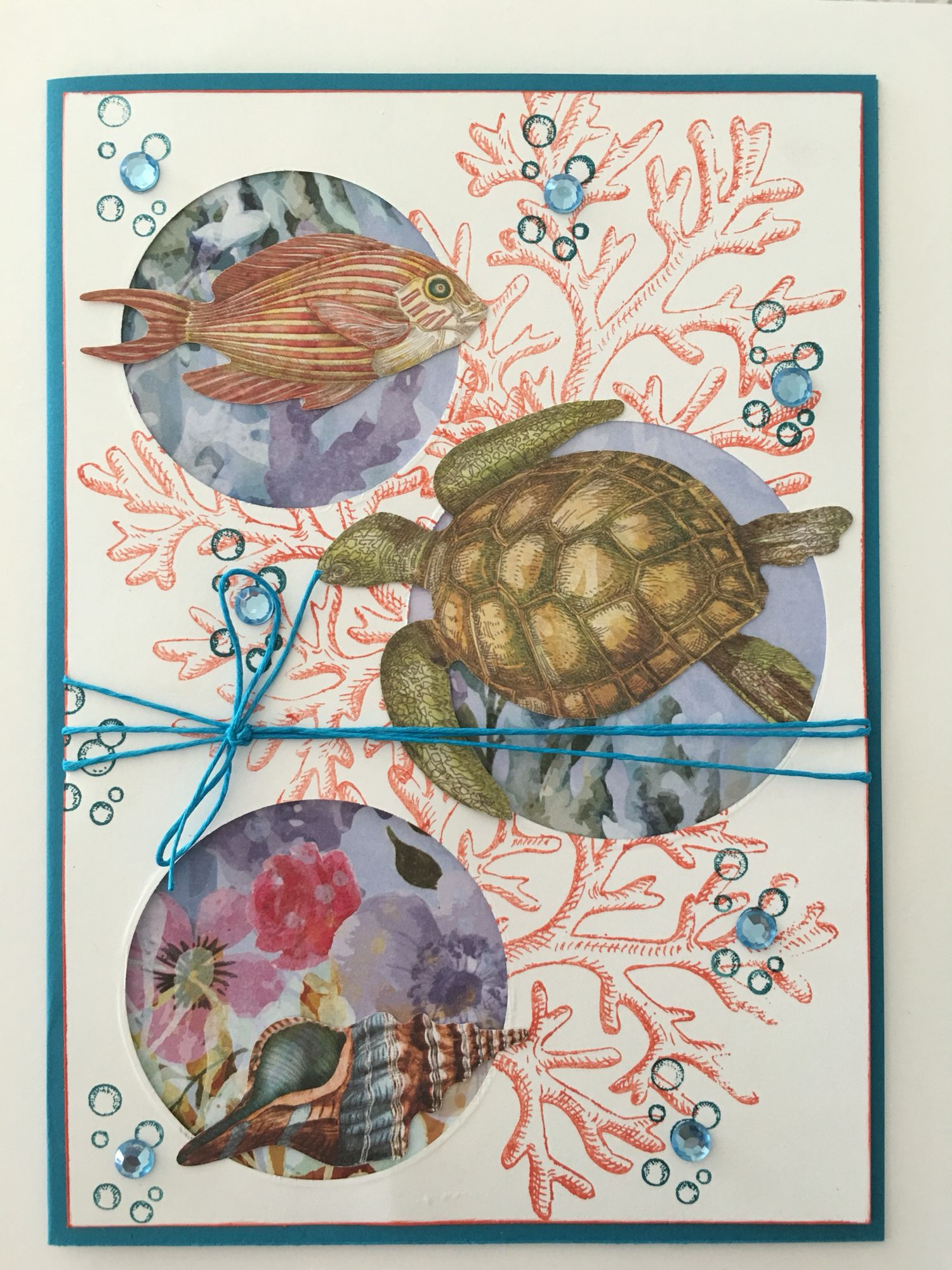 Cby Blank Greeting Card With An Ocean Theme Coral Water Fish