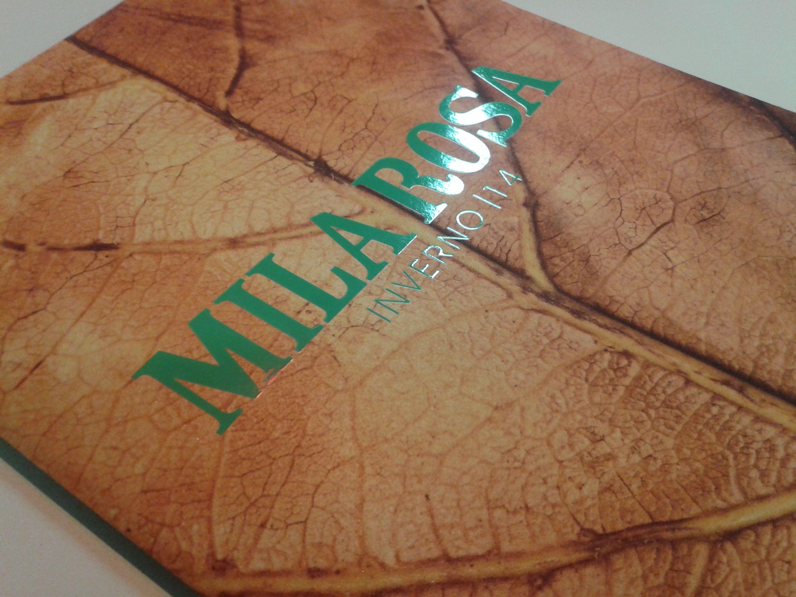 Verniz textura remetendo às folhas secas do inverno foi o diferencial da capa do catálogo da Mila Rosa (coleção inverno 2014). #catalogo #moda