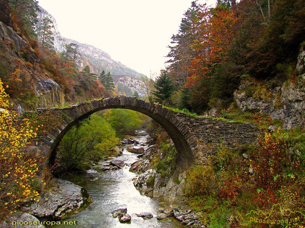 Valle De Anso Sendero Ortitológico Pirineos Occidentales De Huesca Paisajes Destino España Parques Nacionales