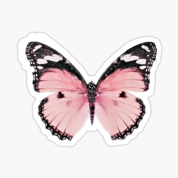 Pink Butterfly Aesthetic Stickers In 2020 Aesthetic Stickers Pink Butterfly Fun Stickers