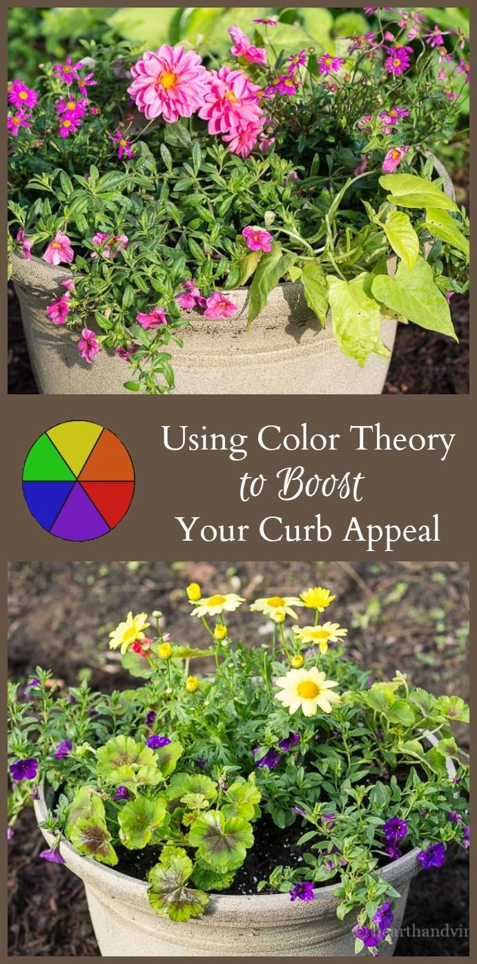 How to work the color wheel to boost your curb appeal gardens