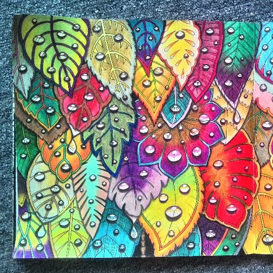 Inspirational Coloring Pages #johannabasford #magicaljungle #selvamagica #adultcoloring #coloringbook #livrodecolorir