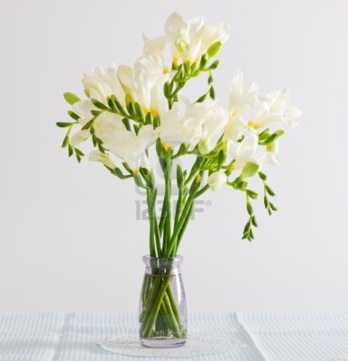 White Freesia Flowers In Decorative Bottles Freesia Flowers Freesia Bouquet Flower Arrangements Simple