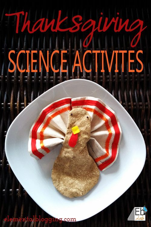 3 Thanksgiving Science Activities you can use to liven up the post-meal lull! {Elemental Blogging}
