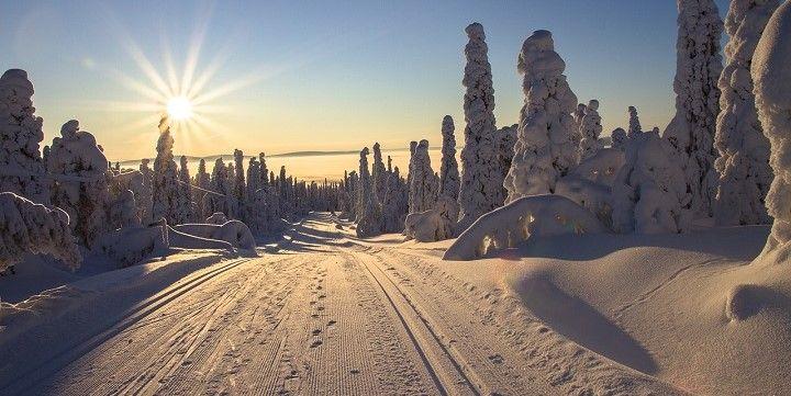 Midnight Sun, Lapland, Finland