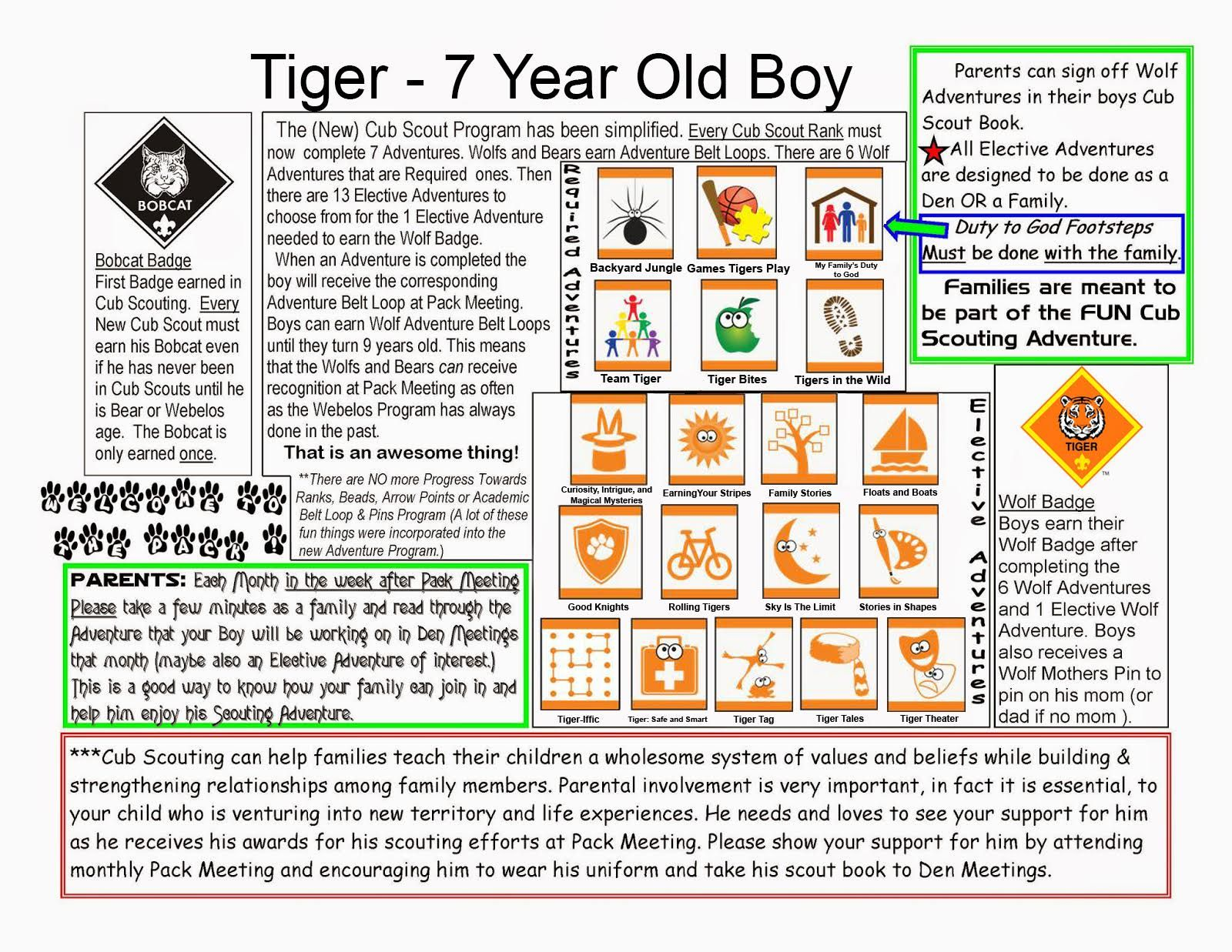 Worksheets Cub Scout Belt Loop Worksheets new tiger basics cub scouts pinterest tigers scout crafts