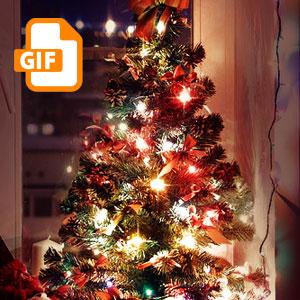 Christmas Lights Animated Gif Animated Christmas Lights Christmas Lights Photoshop Tutorial