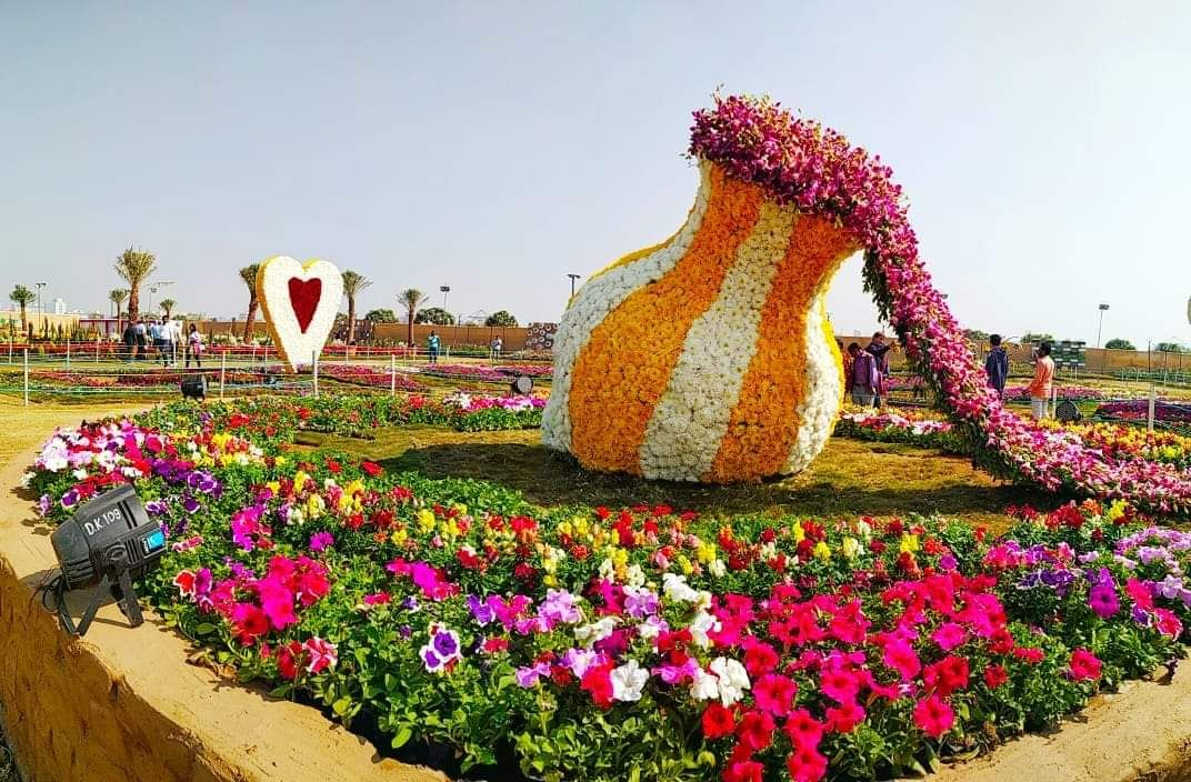 Flower Show 2020 In Ahmedabad In 2020 Flower Show Amazing Flowers Flowers