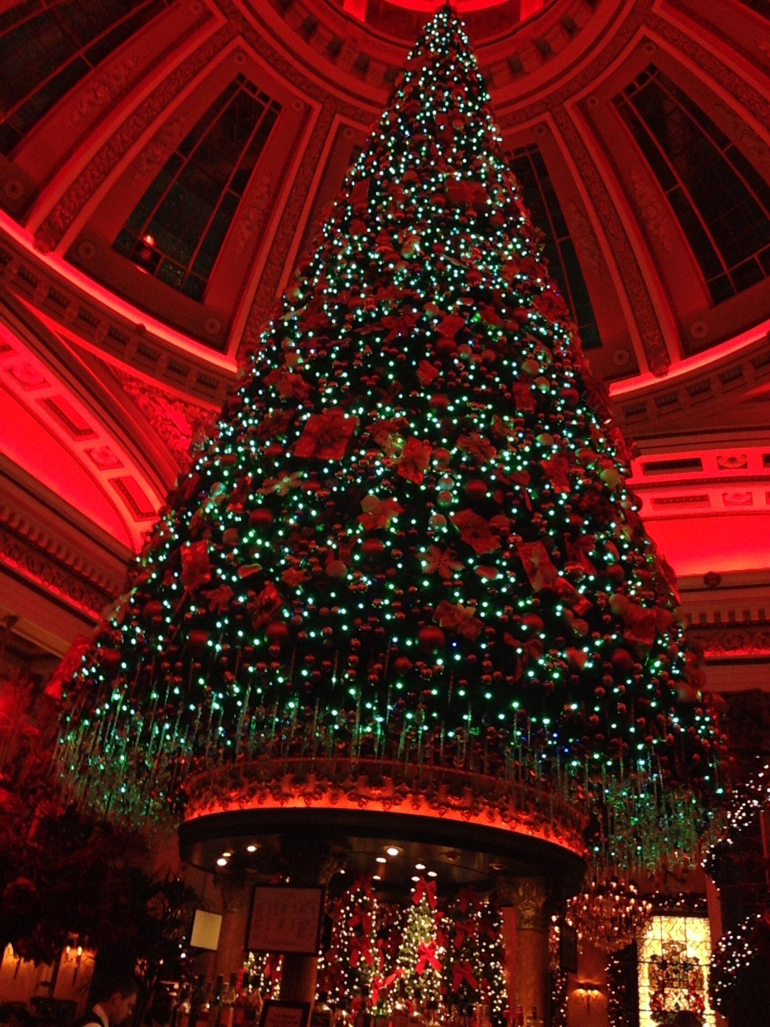 The Dome, Edinburgh Holiday decor, Christmas tree, Christmas