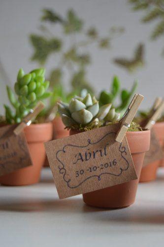 Recuerdos De Bautizo Con Cactus.Cactus Y Suculentas Maceta N 6 Ideal Souvenirs O Regalo