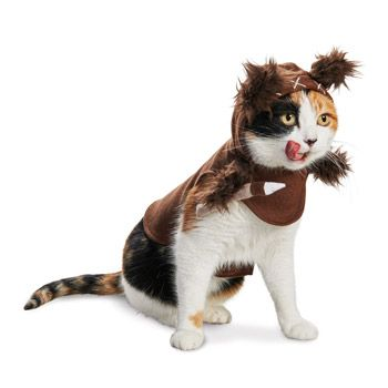 Star Wars Ewok Suit | Halloween Costumes for Cats