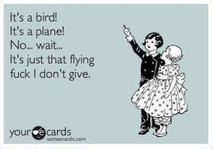 Photo of Its-a-Bird-Its-a-Plane.jpg 695×487 pixels