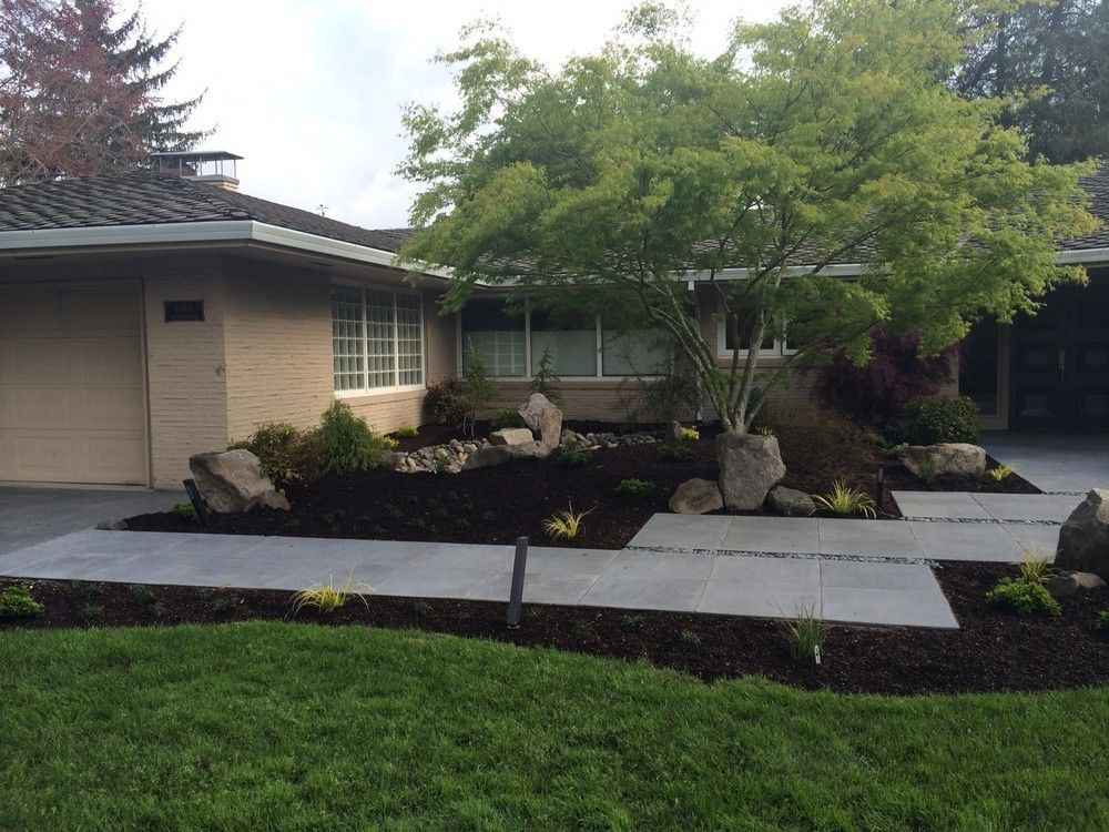 Mid century modern landscape design ross nw watergardens for Modern yard ideas