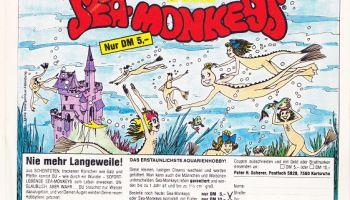 SeaMonkeys collectable Google Search Sea monkeys