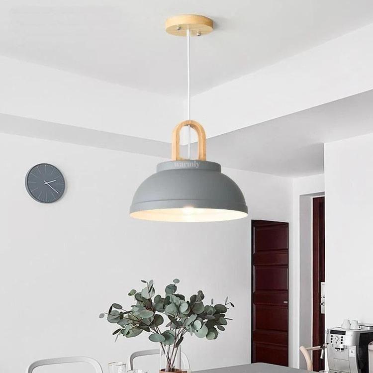 Zox Modern Nordic Iron Pendant Planter Lamp I 2020 Lamper Interior Farger Interior