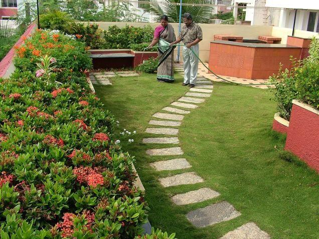 08dcangr Horticult 1676934f Jpg 636 477 Roof Garden Design Home And Garden Garden Ideas India