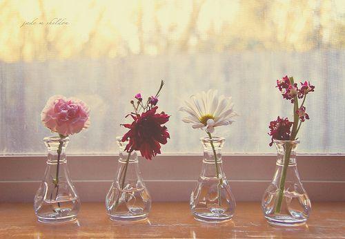 Hello Holly Via Jade M Sheldon Flower Vases Flowers Vase