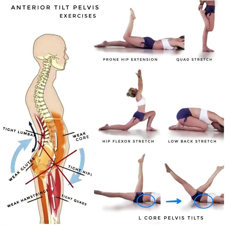 41++ How to do pelvic tilt ideas