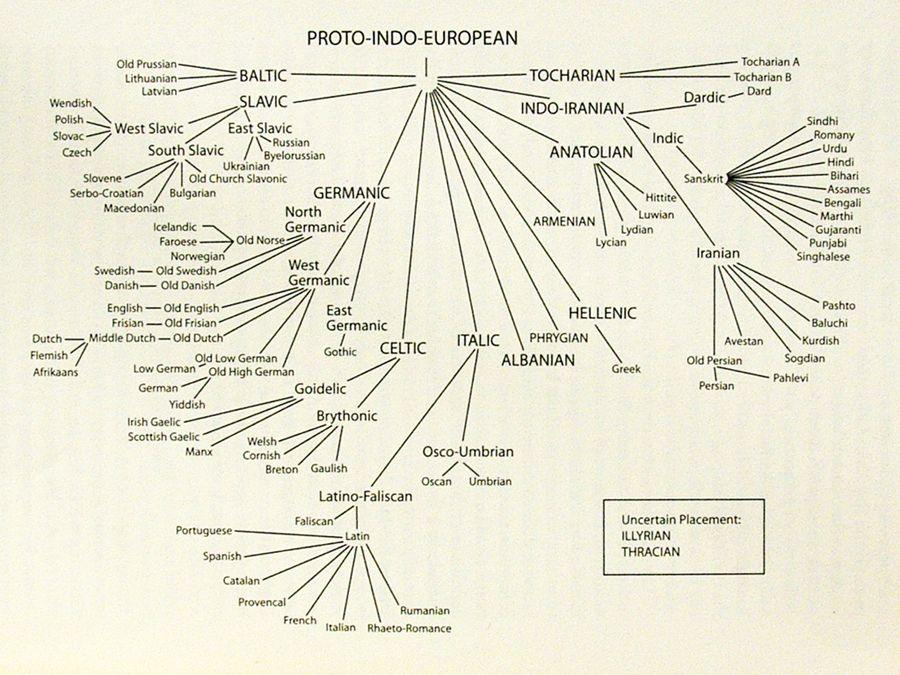 Indo-Iranian languages - Wikipedia  Indo Language