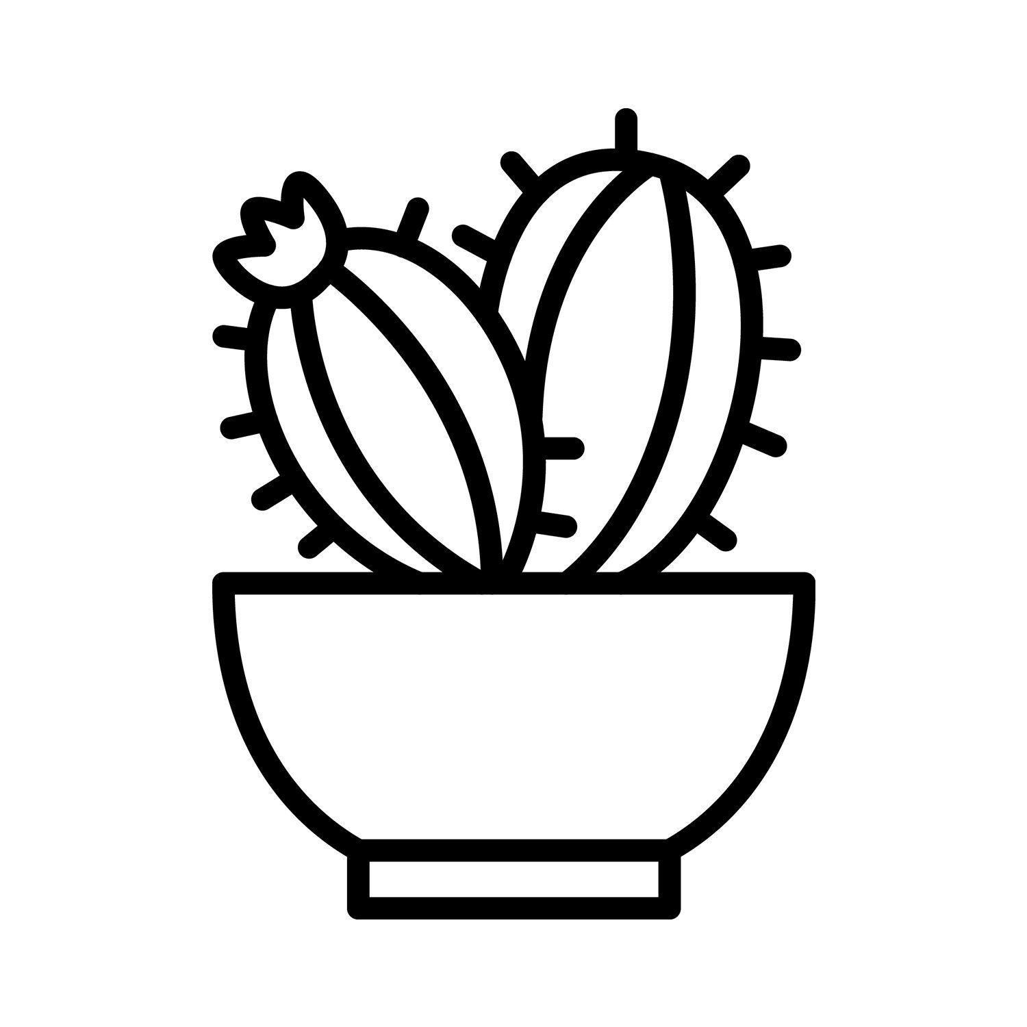 I M Offering A Discount Cactus Drawing Easy Drawings Cute Drawings Tumblr
