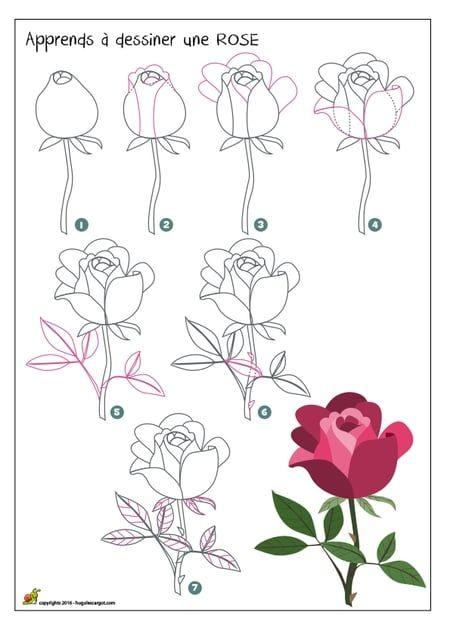 On te propose d 39 apprendre a dessiner une rose on t 39 explique comment apprendre a dessiner une - Belle fleur a dessiner ...