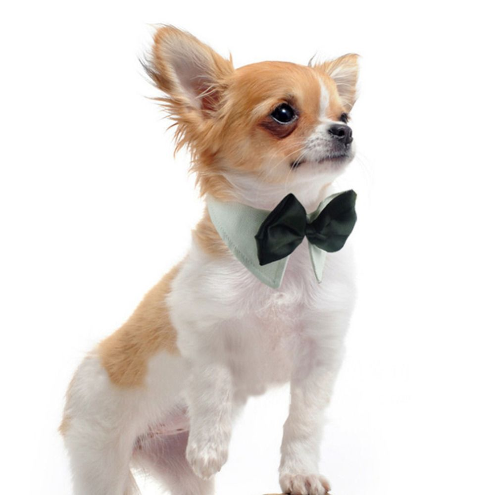 Dog bow tie collar dickie bow cat pet fashion canines black white