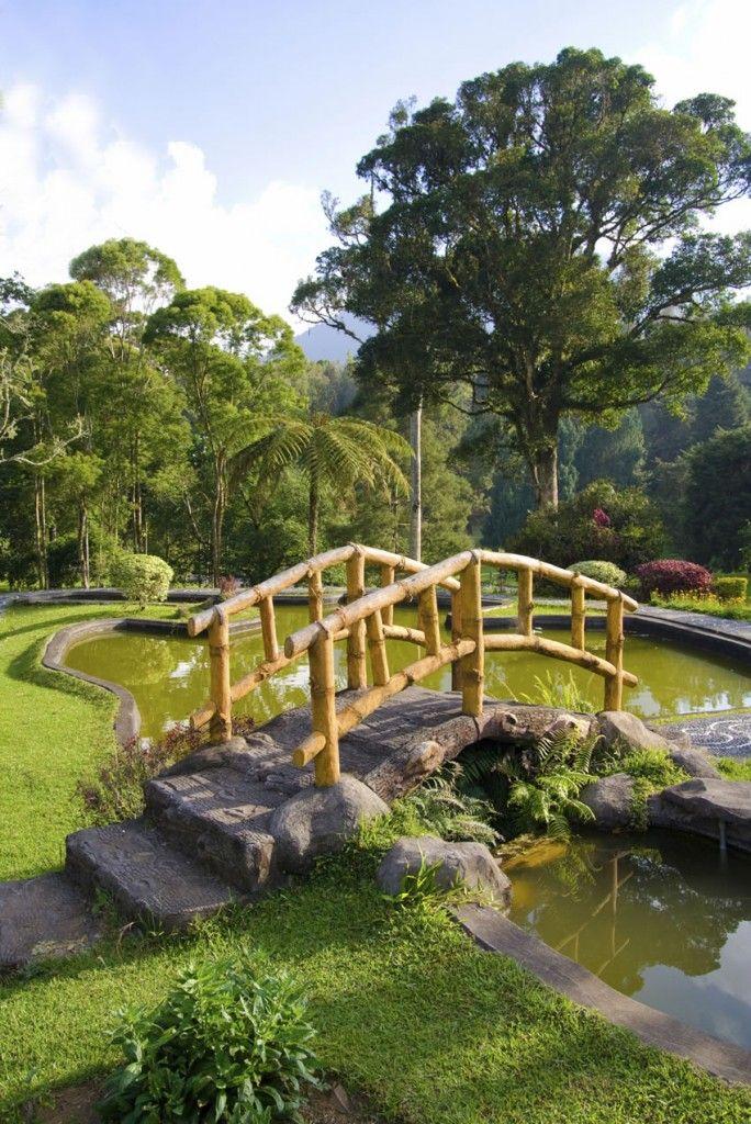 49 Backyard Garden Bridge Ideas and Designs (PHOTOS) Parcela - estanques artificiales