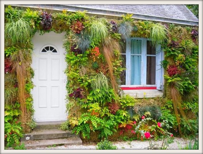 mur vegetal artflore tableau cadre interieure exterieur plante verte