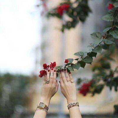روعه الحياه تتركز في إيماننا أن الله لم يخلقنا متفاوتين هو قسم الارزاق جميعها بالتساوي لكنها تتشكل لدى البعض ب Photography What A Wonderful World Flowers