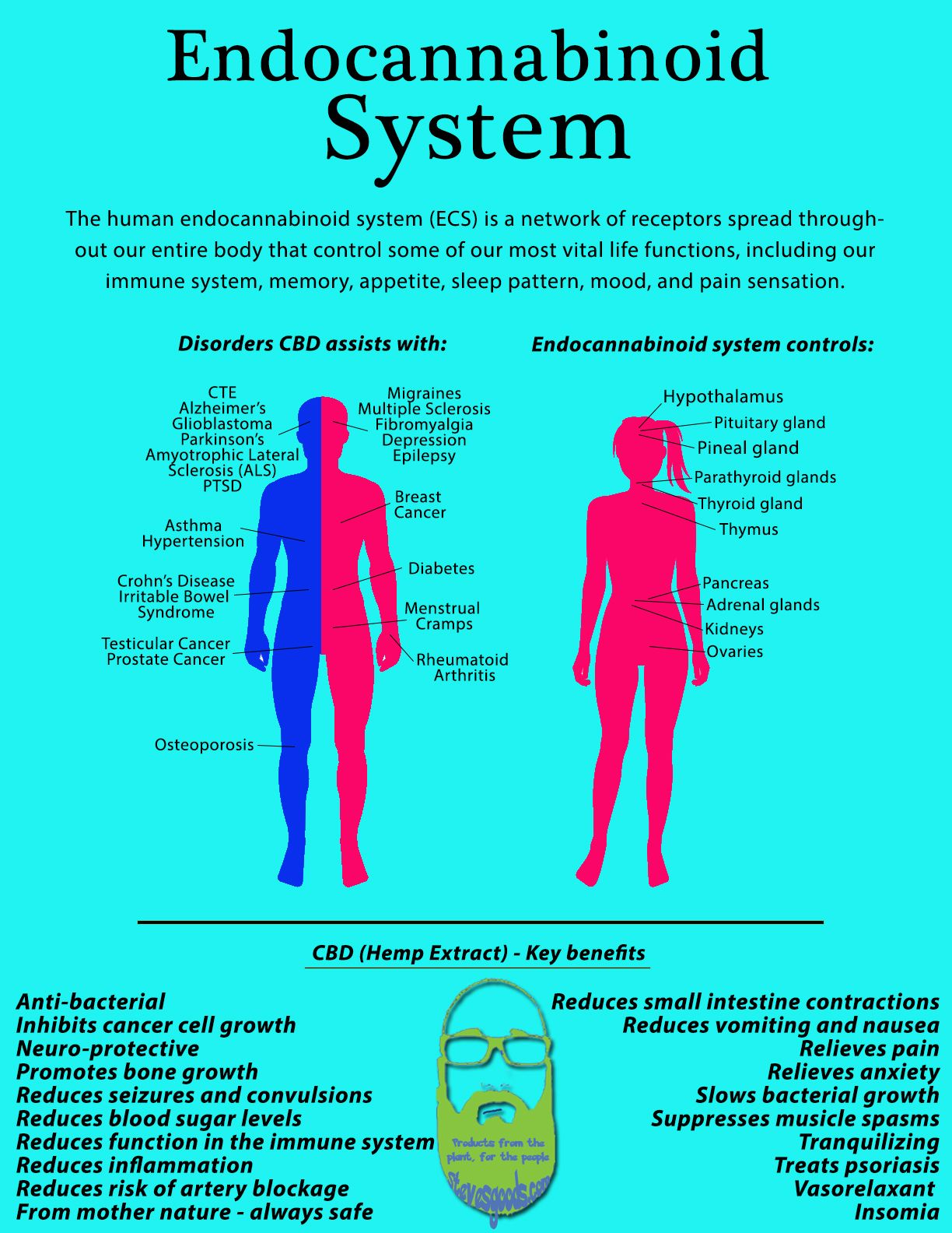 advantages of cause and effect diagram 2008 toyota hilux workmate wiring image result for endocannabinoid system images cbd