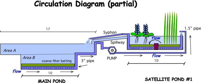 Natural swimming pools diagram buscar con google for Pond filtration system diagram