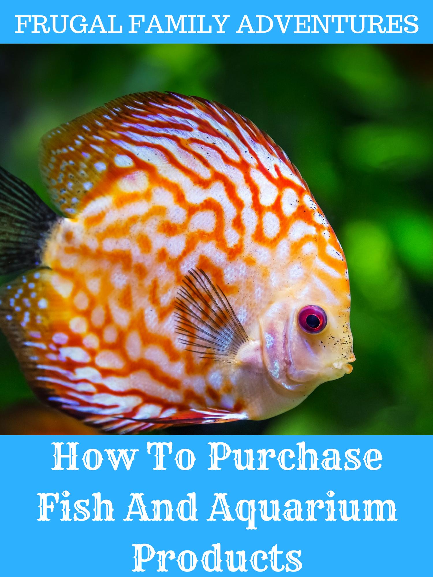 Contact Support Aquarium Fish Fish Discus Fish