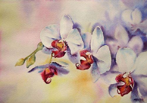 Dessin Et Peinture Video 2680 Comment Peindre Des Orchidees 1