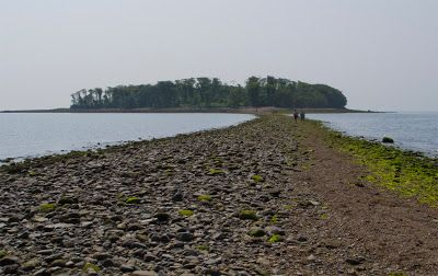 Silver Sands Beach Ord Ct Tombolo To Charles Island At Low Tide