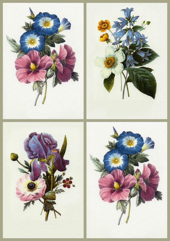 Vintage Floral Print Vintage Floral Prints Vintage Flower Prints Each Print Just