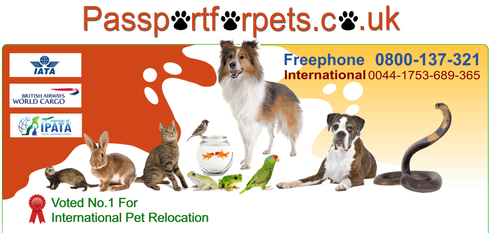 Passportforpets Co Uk Has Been Relocating Pets To New Homes