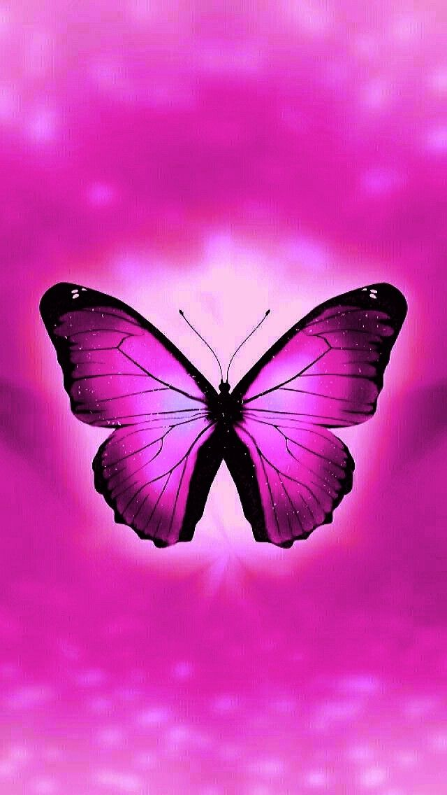 Pink butterfly | Butterfly wallpaper, Purple wallpaper ...