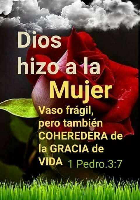 Dios Hizo A La Mujer Vaso Frágil Pero También Coheredera De La Gracia De Vida 1 Pedro 3 7 Biblical Quotes Gods Love Quotes Christian Verses
