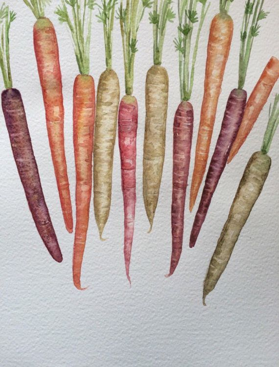 Original Watercolor Painting Carrots Original Watercolor Art
