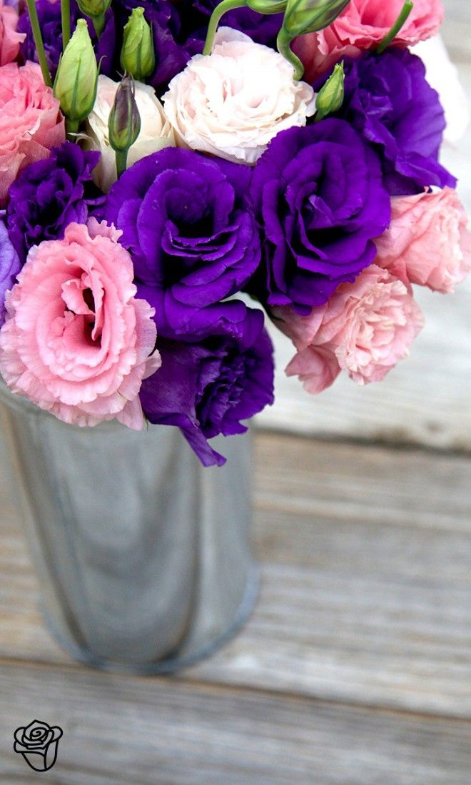 Gorgeous Flowers from The Bouqs | Flowers | Pinterest | Flower ...
