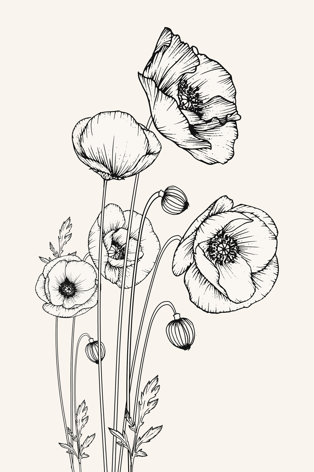 Poppy Flower Print Black White Drawing Nature Lover Wall Art Botanical Print California Nature Decor H Poppy Flower Drawing Flower Drawing Art Prints