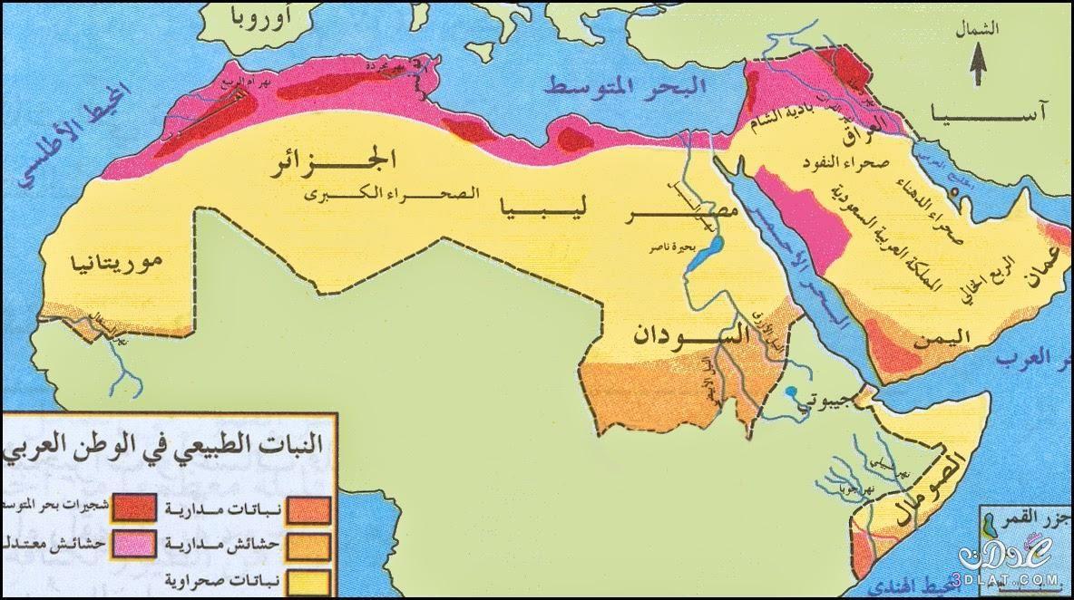 خريطة الوطن العربي الجديدة ملونة وصماء صور متعدده لخرائط الوطن العربي Map Diagram World Map